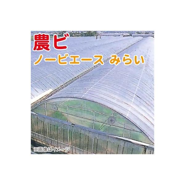 農ビ ノービエース みらい 透明 厚さ0.1mm×幅185cm×長さ100m 農業資材|vg-harada