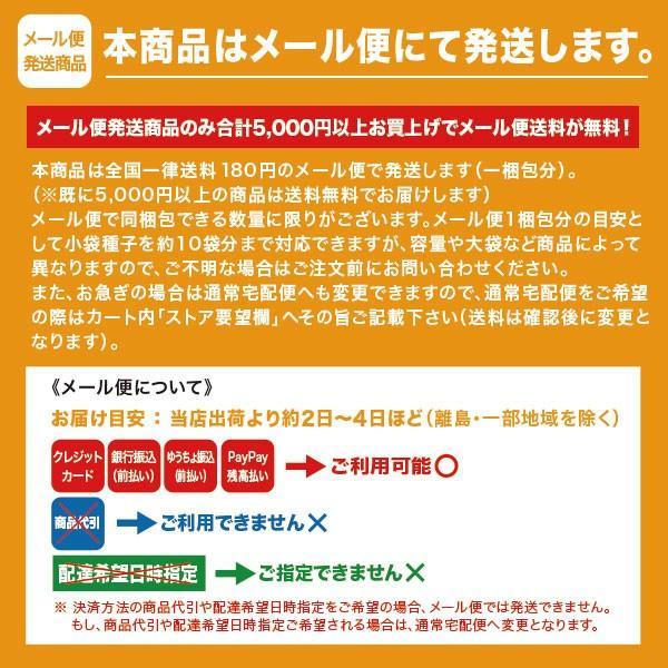 野菜の種/種子 サラダピーマン オレンジ パプリカ 15粒 (メール便可能)|vg-harada|02