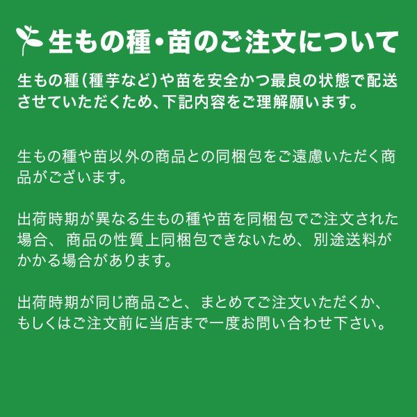 お買い得♪野菜・種/苗[春じゃがいも種芋]北海道産 男爵 男しゃく  じゃがいも種芋・生もの種 量り売り3kg+じゃがいも専用肥料+シリカ付きセット|vg-harada|03