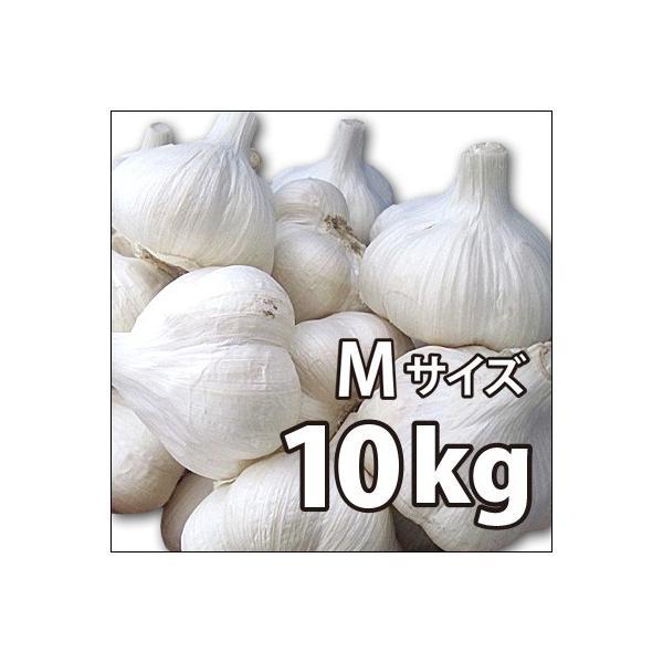〔赤字覚悟!激安大特価〕野菜・種/苗 ニンニク にんにく 種子 国産 青森県産 福地ホワイト Mサイズ 10kg|vg-harada