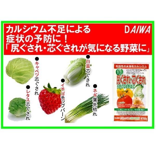 尻ぐされ・芯ぐされが気になる野菜に 600g 園芸用品|vg-harada|02