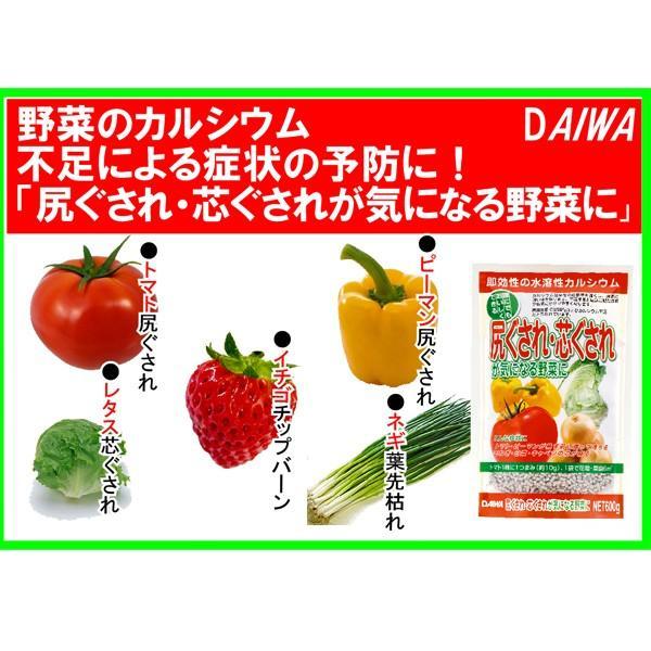 尻ぐされ・芯ぐされが気になる野菜に 600g 園芸用品|vg-harada|03