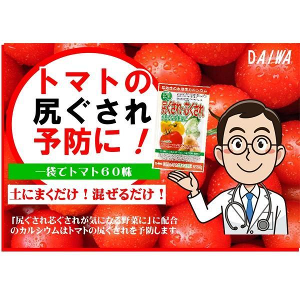 尻ぐされ・芯ぐされが気になる野菜に 600g 園芸用品|vg-harada|04