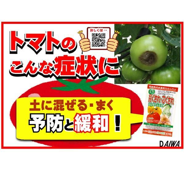 尻ぐされ・芯ぐされが気になる野菜に 600g 園芸用品|vg-harada|05