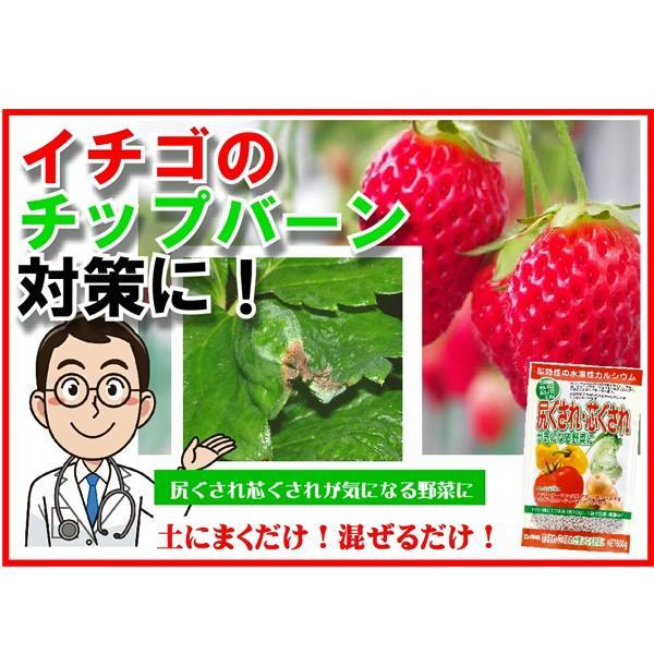 尻ぐされ・芯ぐされが気になる野菜に 600g 園芸用品|vg-harada|07