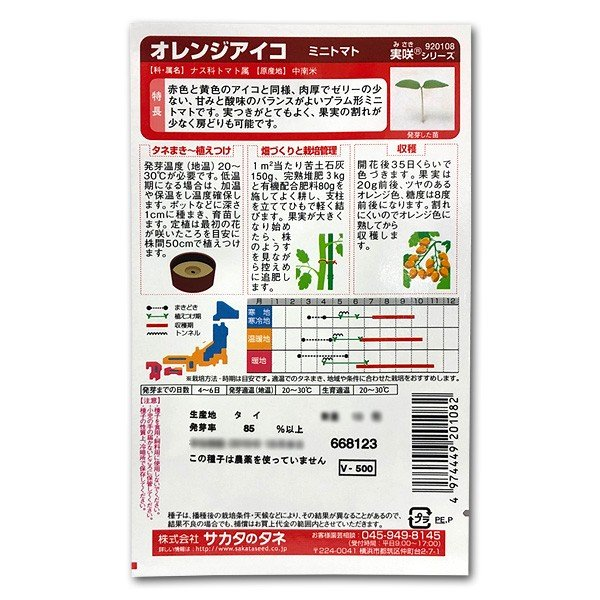 野菜の種/種子 オレンジアイコ・ミニトマト 13粒(メール便発送)サカタのタネ 種苗|vg-harada|02