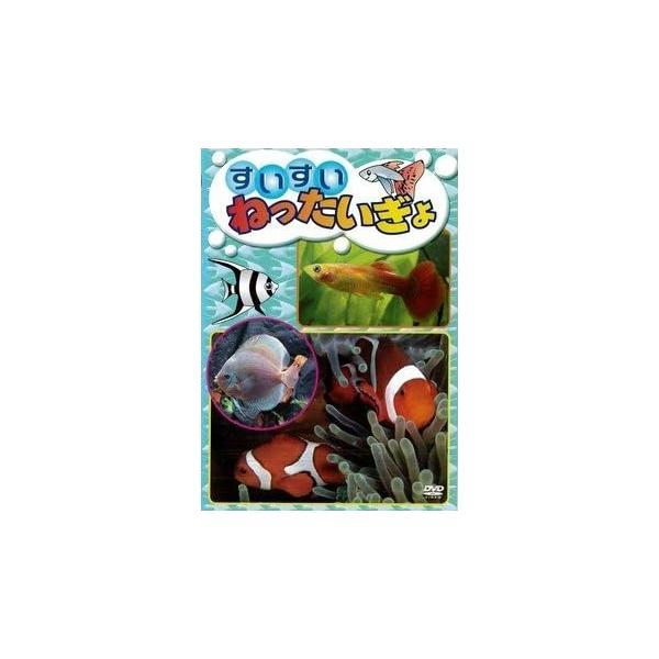 【中古】すいすい ねったいぎょ b23944/KIBR-5136【中古DVDレンタル専用】