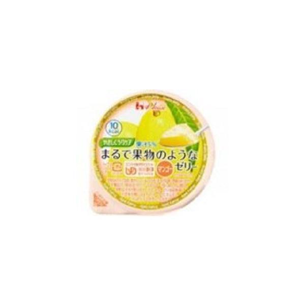 介護食 デザート ゼリー 果物 7種 セット   優しくラクケアまるで果物のようなゼリー7種×3セット vifkyoto 04