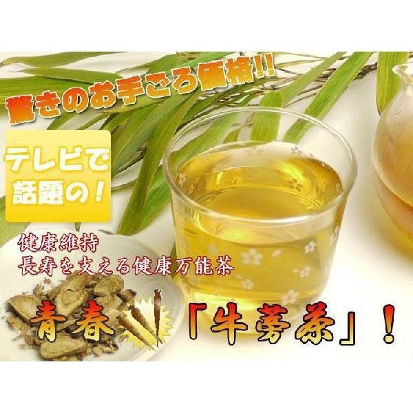 健康茶 ごぼう茶 青春 牛蒡茶 有機 健康万能茶 美容 ティーバッグ 1050g