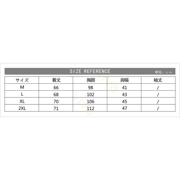 パーカ メンズ Tシャツ ジャージ スポーツウエア カジュアル フード付き トレーナ トレーニング セットアップ スポーツウェア 半袖 春 夏 秋 冬|viva-v1|03
