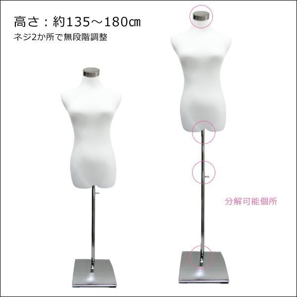 レディース トルソー 9号 白 パンツ対応 角型台J JWJ|vivaenterplise|04