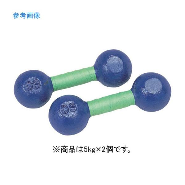 DANNO ダンノ 鉄アレー 5kg D-809  家トレ 【代引不可】