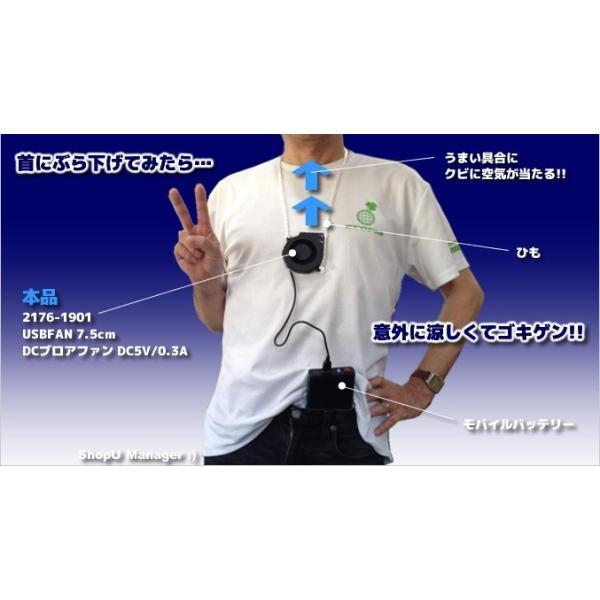 USBFAN 7.5cm DCブロアファン DC5V 0.3-0.4A 送料216円・ポスト投函 (商品番号2176-1901) vshopu-2 04