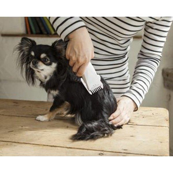 バリカン 犬 猫 用 電池式 部分カット 足裏や顔に ペットバリカン 電池サービス 送料無料|w-yutori|03