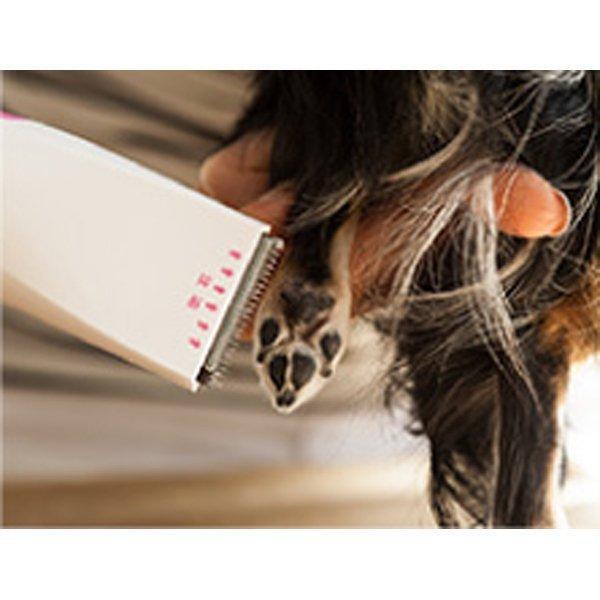バリカン 犬 猫 用 電池式 部分カット 足裏や顔に ペットバリカン 電池サービス 送料無料|w-yutori|04