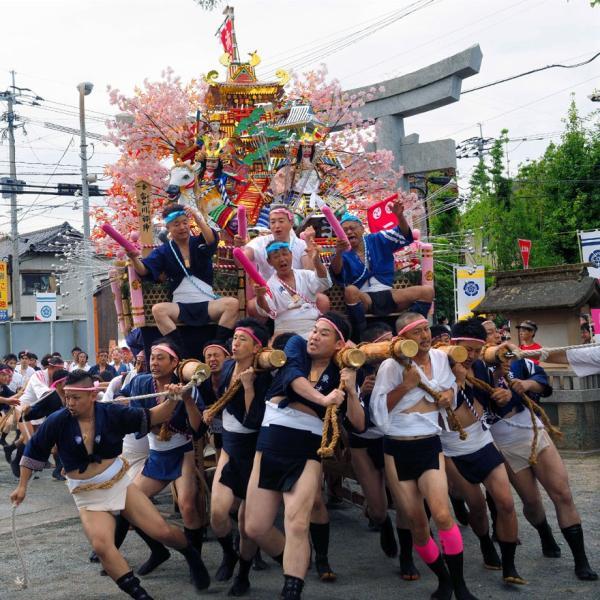 【52d】 DVD写真集「津屋崎祇園山笠」2018年版(スライドショー形式)|wada-photo|04