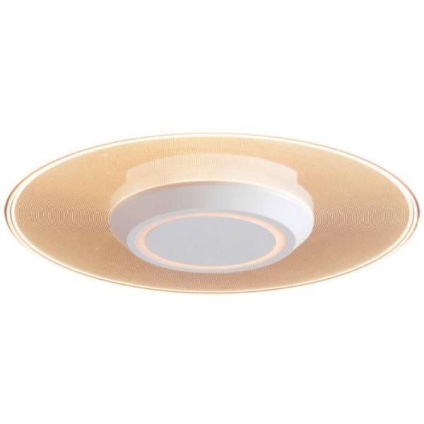 アイリスオーヤマ株式会社 小型シーリングライト 529231(電球色) 3386-300 お取り寄せ 通販 おすすめ