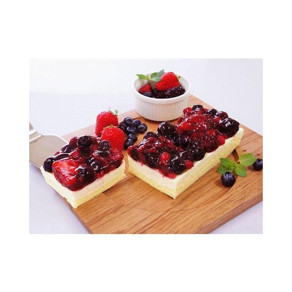 5種のベリー贅沢 レアチーズケーキ 約280g ×2個セット 北海道 お取り寄せ お土産 ギフト プレゼント 特産品 名物商品 お中元 御中元 おすすめ