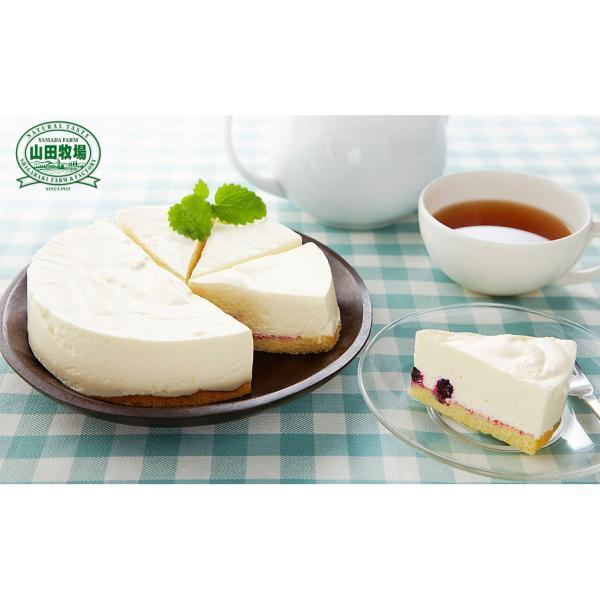 滋賀県 信楽 山田牧場 芳醇レアチーズケーキ 5号 お取り寄せ お土産 ギフト プレゼント 特産品 名物商品 おすすめ