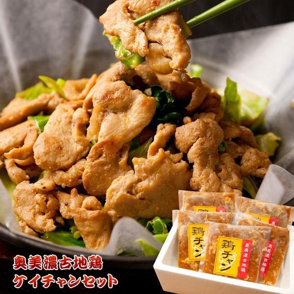 奥美濃古地鶏ケイチャンセット G-KEI-A