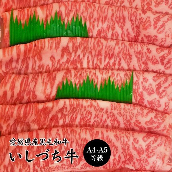 愛媛県産いしづち牛 雌 黒毛和牛 サーロイン しゃぶしゃぶセット 約500g お取り寄せ お土産 ギフト プレゼント 特産品 名物商品 お歳暮 御歳暮 おすすめ