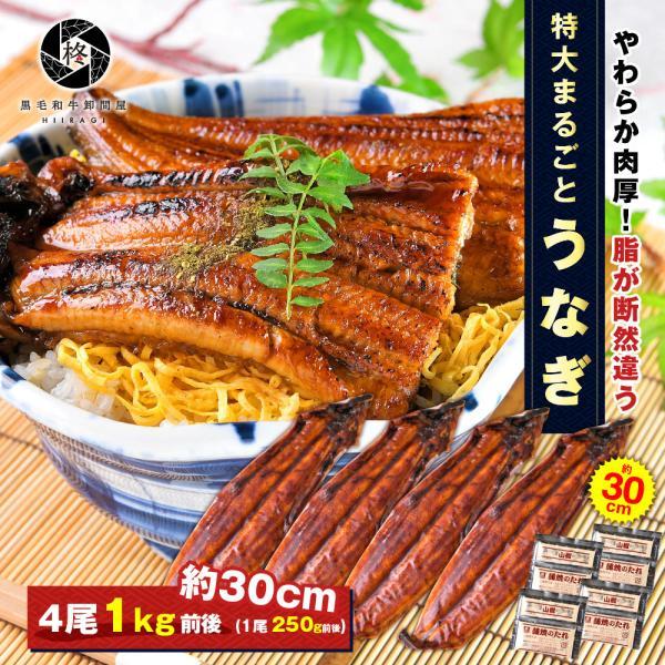 鰻 お取り寄せ 特大 うなぎ 蒲焼き 4尾 (タレ 山椒 付) 送料無料 お取り寄せグルメ ギフト 贈り物 通販 冷凍食品