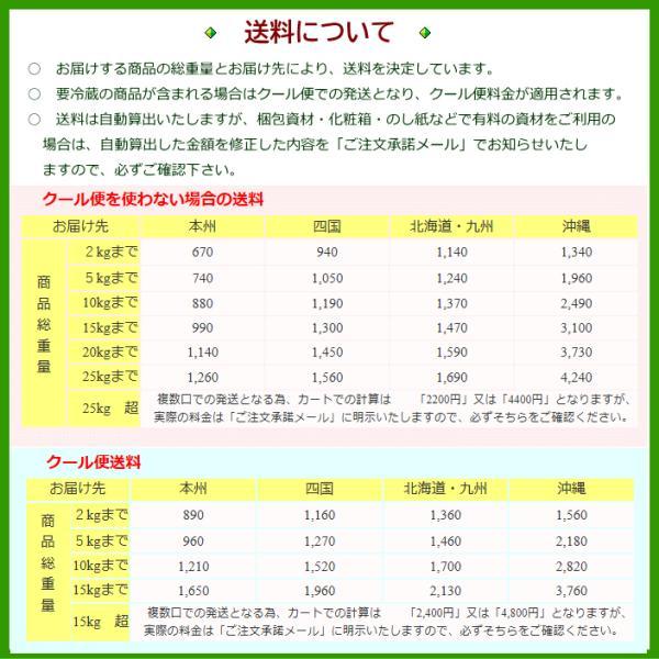 八海山 越後で候 純米大吟醸 赤越後 日本酒 720ml オリジナルグラスセット wakamatsuya 06