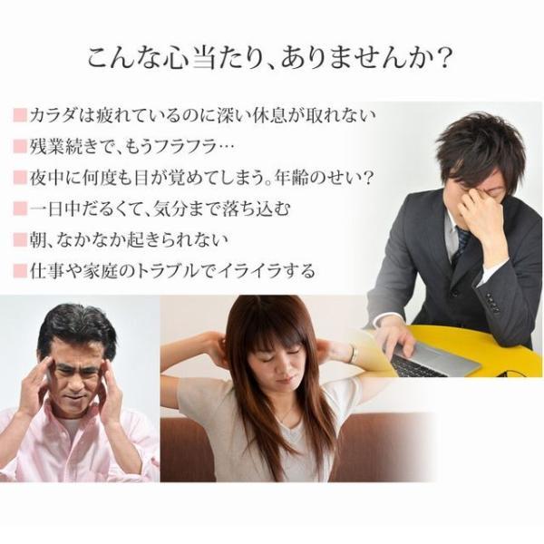 ねむリラ 休息サプリ(お試し約6日分) 睡眠 サプリ|wakan-medica|03