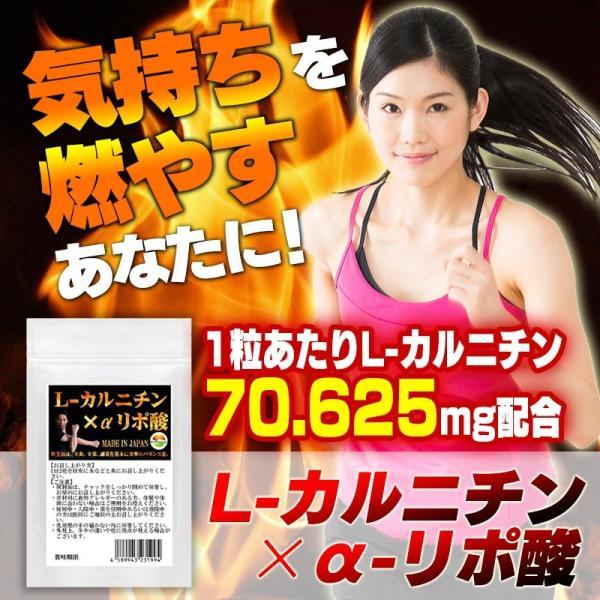 L-カルニチン 60粒 コエンザイムQ10+カテキン絶妙の配合 メール便発送|wakasugi2012