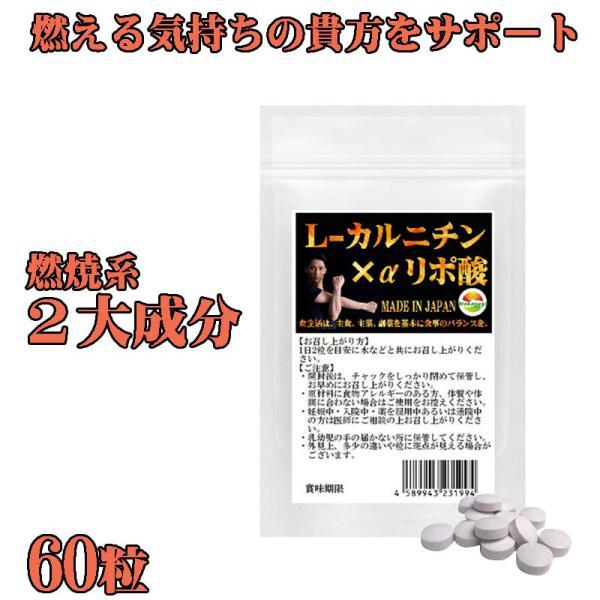 L-カルニチン 60粒 コエンザイムQ10+カテキン絶妙の配合 メール便発送|wakasugi2012|06