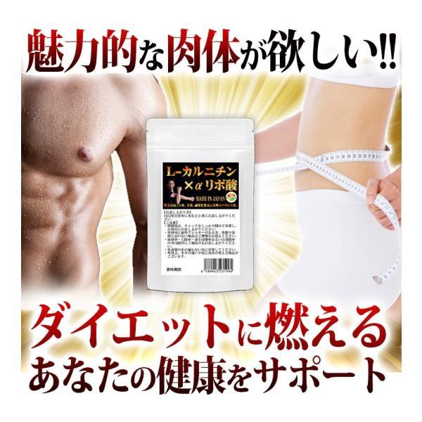 L-カルニチン 60粒 コエンザイムQ10+カテキン絶妙の配合 メール便発送|wakasugi2012|07