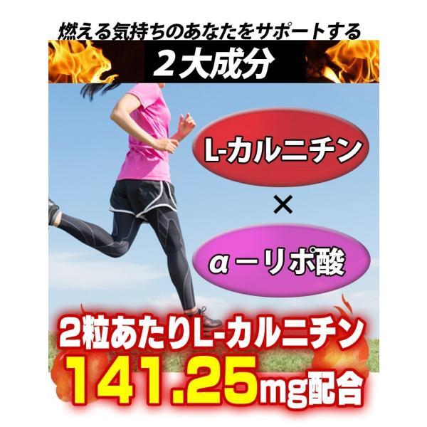 L-カルニチン 60粒 コエンザイムQ10+カテキン絶妙の配合 メール便発送|wakasugi2012|08