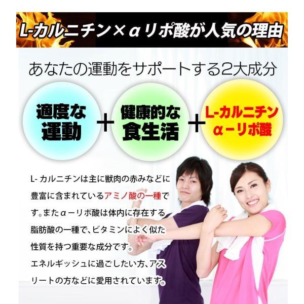 L-カルニチン 60粒 コエンザイムQ10+カテキン絶妙の配合 メール便発送|wakasugi2012|09