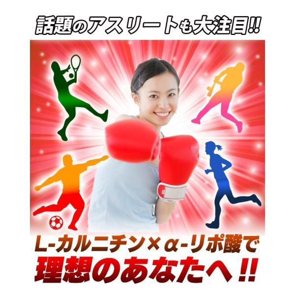 L-カルニチン 60粒 コエンザイムQ10+カテキン絶妙の配合 メール便発送|wakasugi2012|10