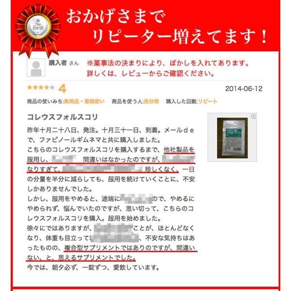 コレウスフォルスコリ  合計60粒 最大1カ月分|wakasugi2012|11