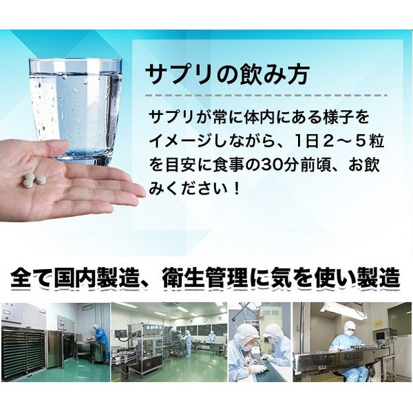 コレウスフォルスコリ  合計60粒 最大1カ月分|wakasugi2012|17