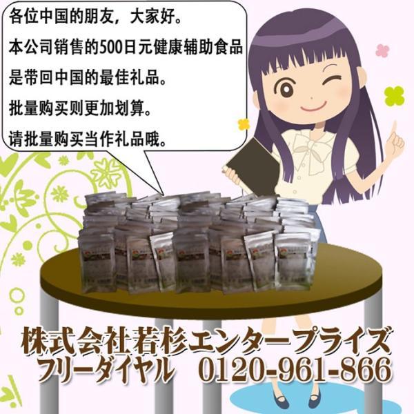 コレウスフォルスコリ  合計60粒 最大1カ月分|wakasugi2012|20