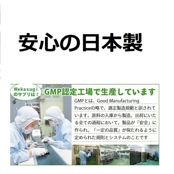 ビルベリー&ルテイン 60粒 コエンザイムQ10配合  メール便発送|wakasugi2012|17