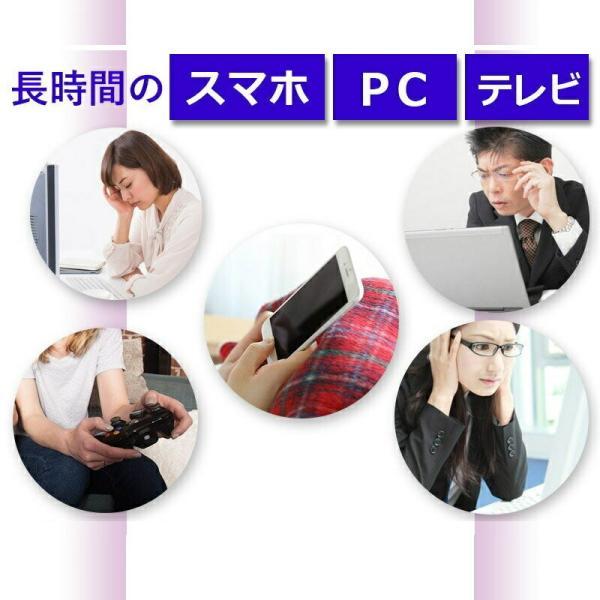 ビルベリー&ルテイン 60粒 コエンザイムQ10配合  メール便発送|wakasugi2012|06