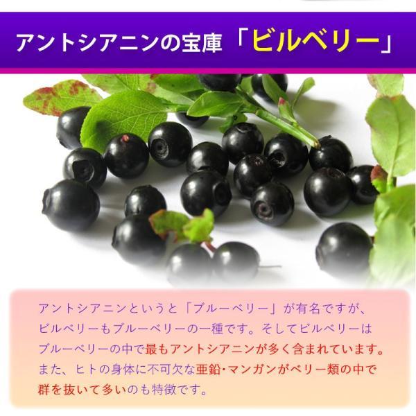 ビルベリー&ルテイン 60粒 コエンザイムQ10配合  メール便発送|wakasugi2012|08