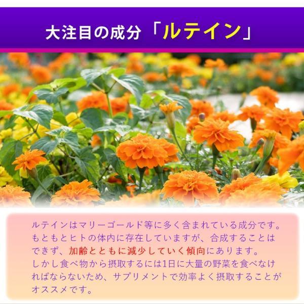 ビルベリー&ルテイン 60粒 コエンザイムQ10配合  メール便発送|wakasugi2012|10