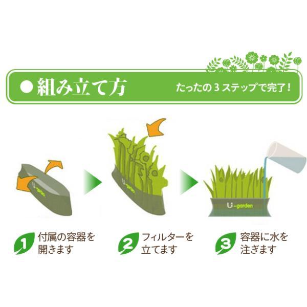 ペーパー加湿器 エコガーデン まるで観葉植物 電気不要 気化式加湿器 |wakasugi2012|11