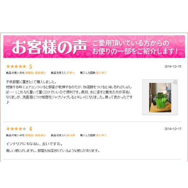 ペーパー加湿器 エコガーデン まるで観葉植物 電気不要 気化式加湿器 |wakasugi2012|16