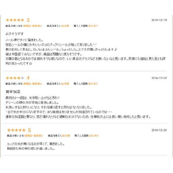 ペーパー加湿器 エコガーデン まるで観葉植物 電気不要 気化式加湿器 |wakasugi2012|17
