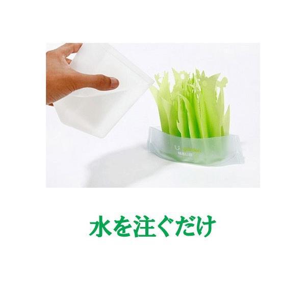 ペーパー加湿器 エコガーデン まるで観葉植物 電気不要 気化式加湿器 |wakasugi2012|20