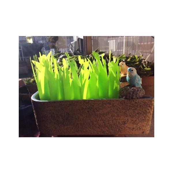 ペーパー加湿器 エコガーデン まるで観葉植物 電気不要 気化式加湿器 |wakasugi2012|21
