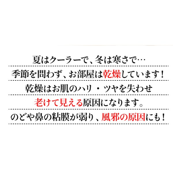 ペーパー加湿器 エコガーデン まるで観葉植物 電気不要 気化式加湿器 |wakasugi2012|06