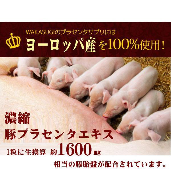 プラセンタ サプリメント 30粒 生カプセルタイプ メール便発送|wakasugi2012|07