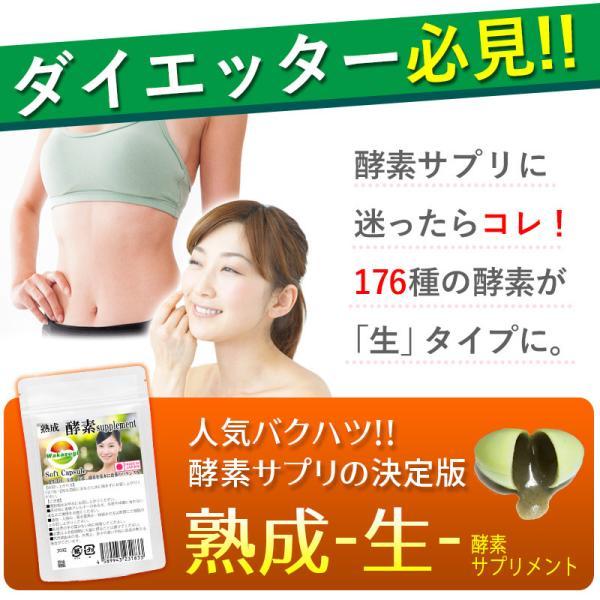 熟成 生酵素サプリ 生野草酵素 ソフトカプセル 30粒 メール便発送|wakasugi2012|05