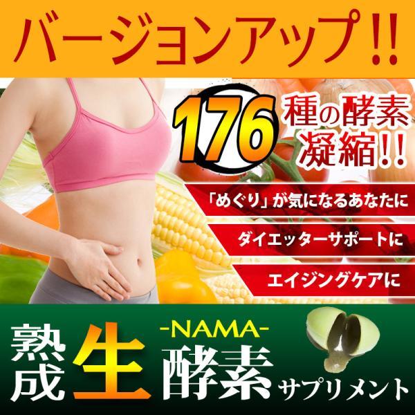 熟成 生酵素サプリ 生野草酵素 ソフトカプセル 30粒 メール便発送|wakasugi2012|10